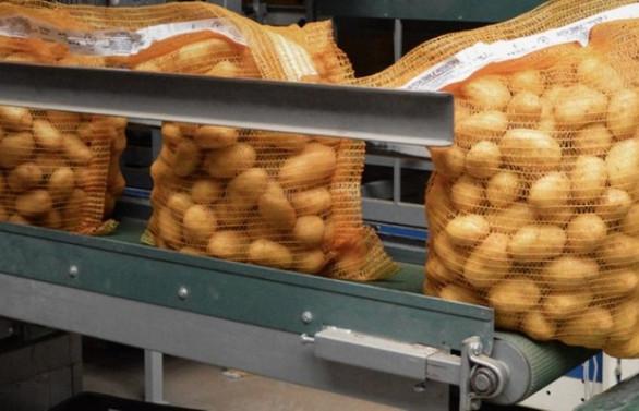 Patates ithalatını McCain Food mu yapacak?