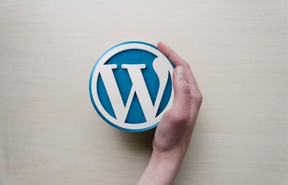 WordPress meraklıları İstanbul'da bir araya gelecek