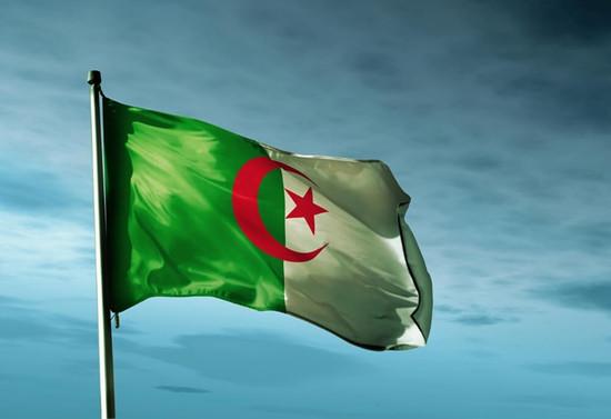 Cezayir cumhurbaşkanlığı makamının boşaltılması çağrısı