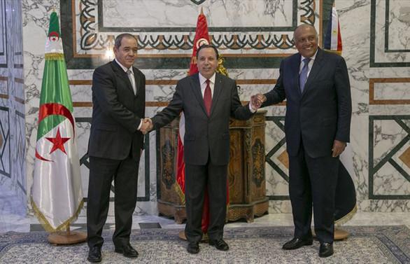 Libya'ya komşu ülkelerden 'siyasi çözüm' vurgusu
