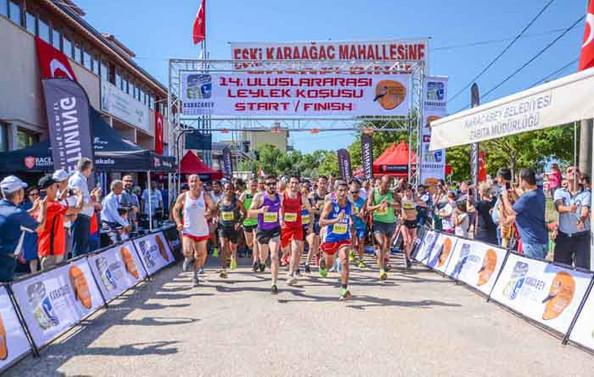 Leylek Köyü'nde festival coşkusu