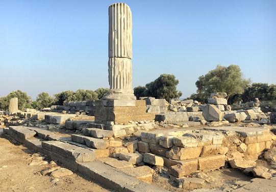 Kitap koleksiyoncusu bile bulunan antik kent, Teos