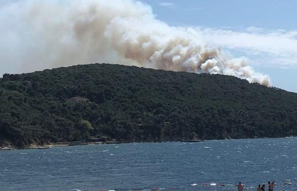 Heybeliada'da orman yangını kontrol altında