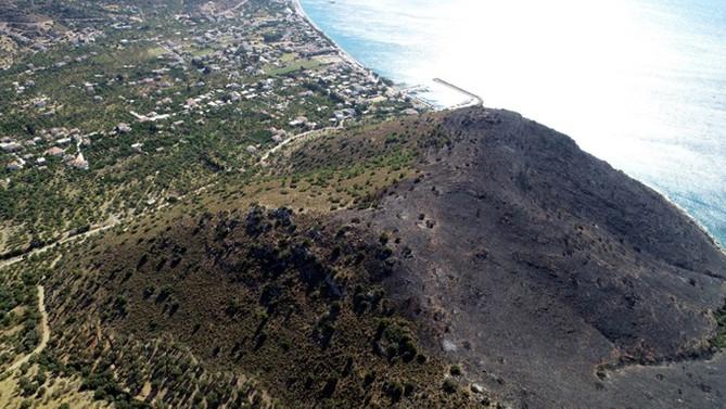 Muğla'daki yangında 5 hektar alan zarar gördü