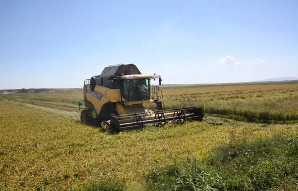 Tarım sektörü yıllık ortalama % 3,1 büyüyecek