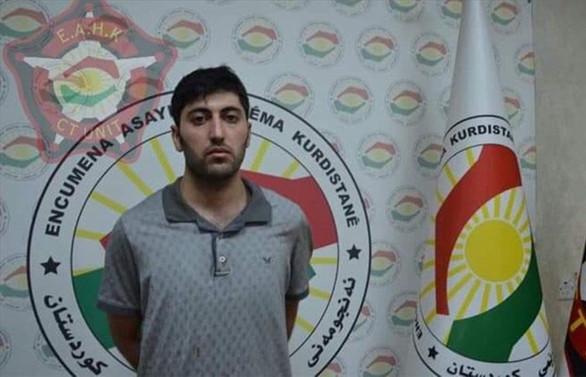 Erbil sadırganı yakalandı