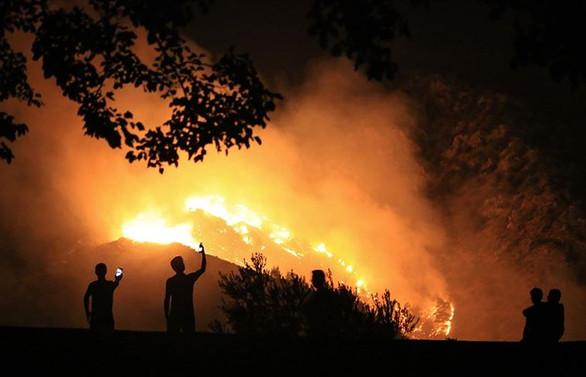 Adalet Bakanlığı orman yangınlarına ilişkin cezaları hatırlattı
