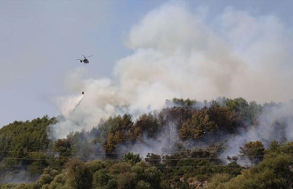 Antalya ve Muğla'da orman yangını