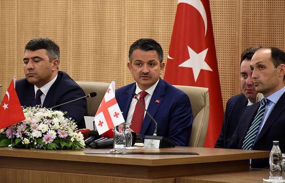 Türkiye, Azerbaycan ve Gürcistan'dan fındık için iş birliği kararı