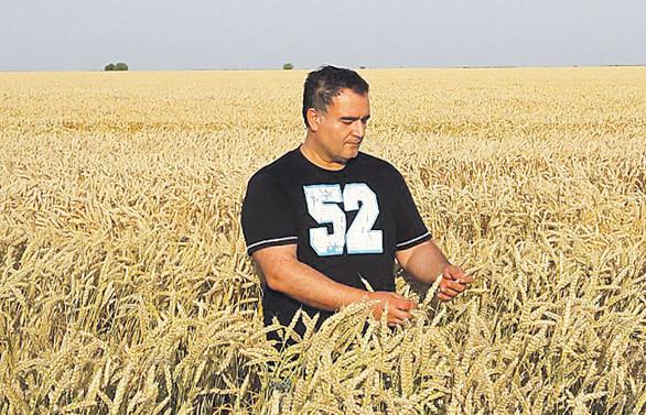 Ukrayna'nın toprağına Türk bereketi