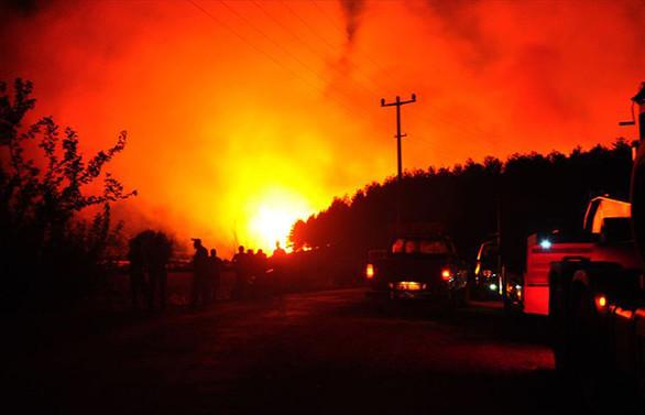 Bodrum ve Milas'taki yangınlar kontrol altında