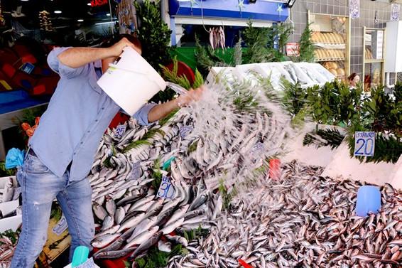 Av yasağı sona erdi, işte tezgahlardaki balık fiyatları