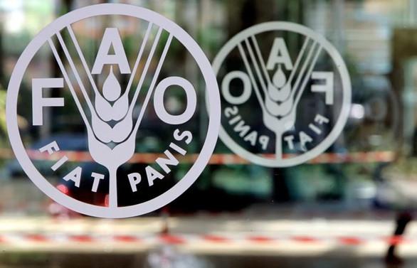 FAO'dan Türkiye'deki tarım uygulamalarına övgü