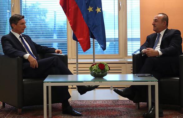 Çavuşoğlu'ndan 'Türkiye'ye AB'de özel statü' teklifine yanıt