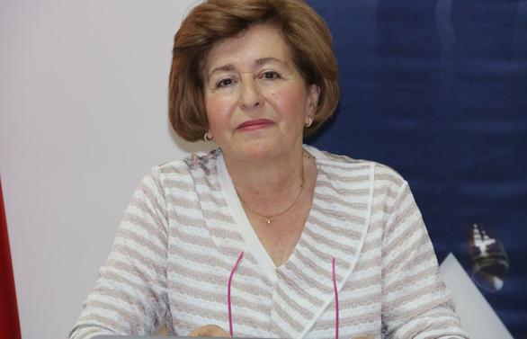 TEİS Başkanı Saydan: Gurbetçilerin acil dışındaki ilaçları karşılanmıyor
