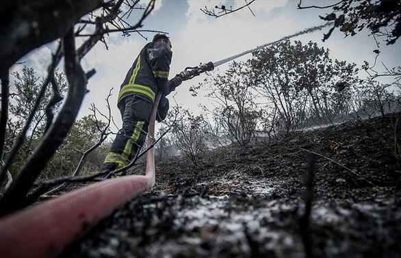 9 ilde çıkan orman yangınları söndürüldü