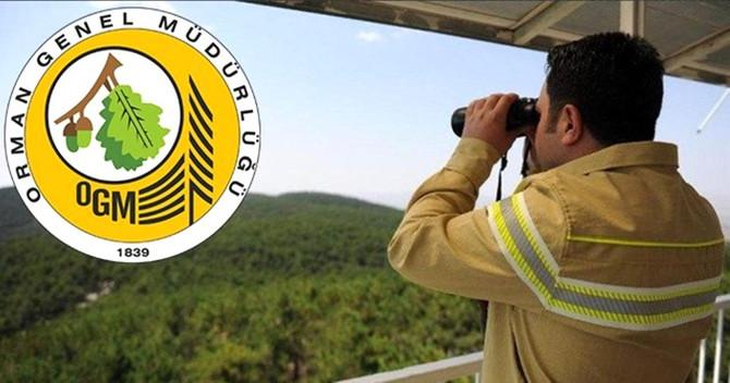 Orman Genel Müdürlüğü, 274 daimi işçi alacak