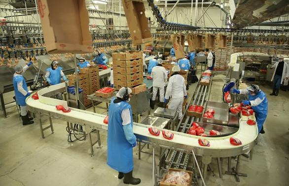 Beyaz et sektörü Çin pazarının açılmasını bekliyor