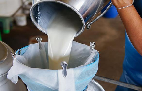 MESİAD: İşleyecek süt bulamama noktasındayız
