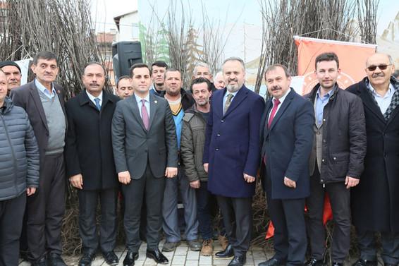 Harmancık'ta ayva fidanı dağıtıldı