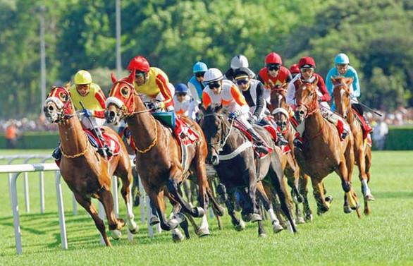 Koronavirüs tedbirleri kapsamında at yarışları da ertelendi