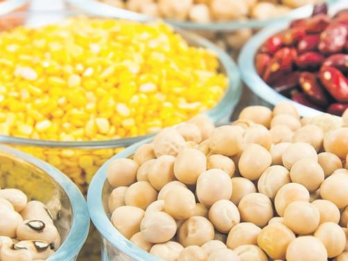 Hububat, bakliyat ve yağlı tohum üretimini artırmak zorundayız