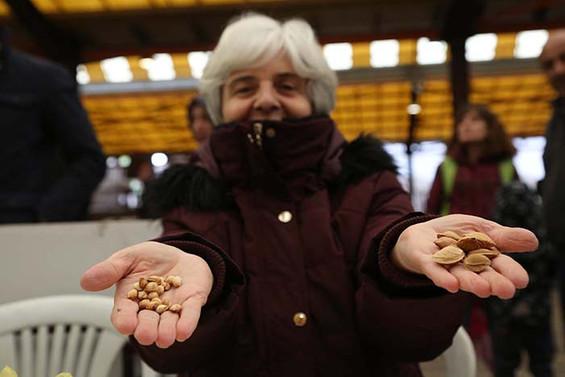 Tohumlar Nilüfer'de takas edildi