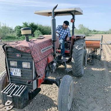 Antalya'da pamuk ekim sezonu başladı