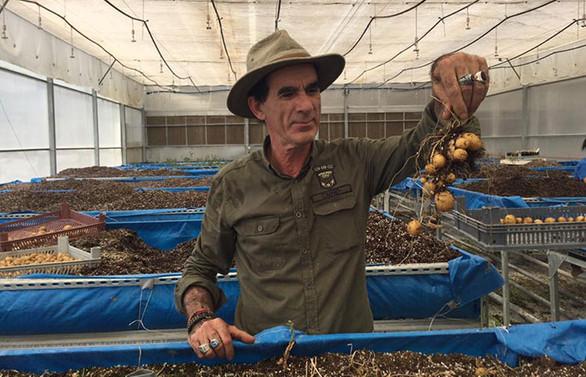 Çiftçiler, patatese destek bekliyor