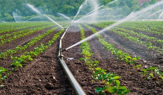 Dicle Elektrik, borçlu sulama abonelerinin elektriğini kesecek