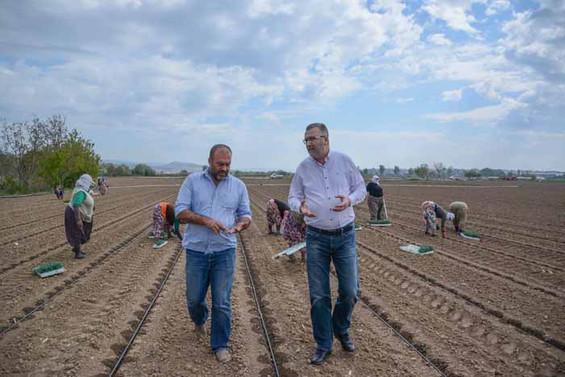 Karacabey Belediye Başkanı Özkan'dan pancar açıklaması