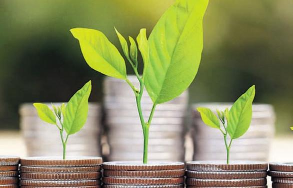 Meyve-sebze yatırımlarına ilgi artıyor