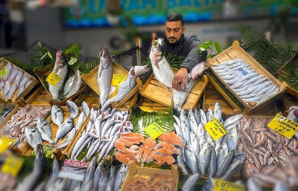 Balıklar bu kez objektiflere takıldı!