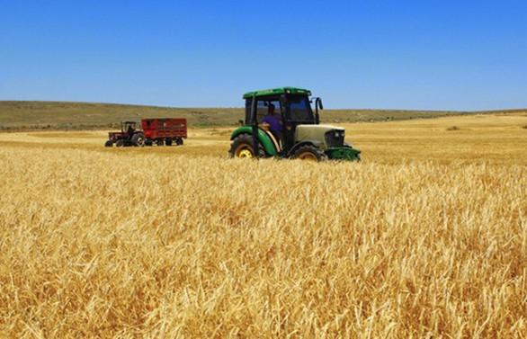 Tarım ÜFE, haziranda yüzde 14.5 arttı