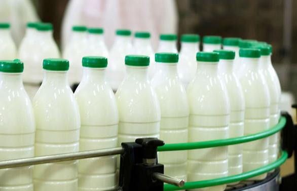 Süt üreticileri fiyatlarda yeniden düzenleme istiyor