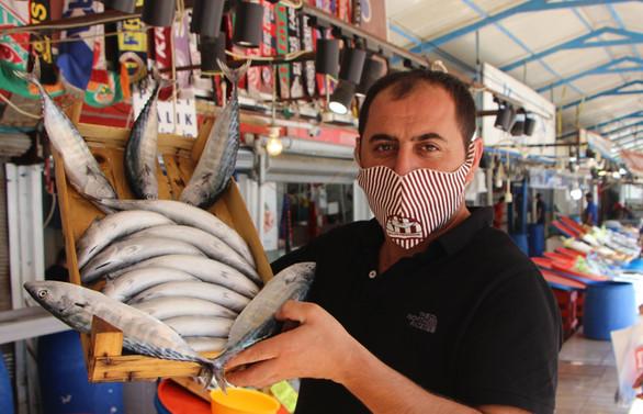 Balıkesir'de vira bismillah diyecek balıkçılar palamut bolluğundan umutlu