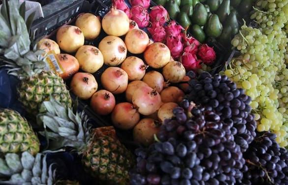 Egeli tarımsal ürün ihracatçılarının hedefi 10 milyar dolar