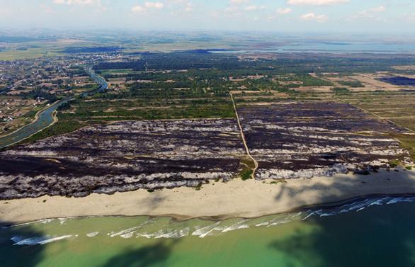 Kızılırmak Deltası Kuş Cenneti'ndeki yangın kontrol altında