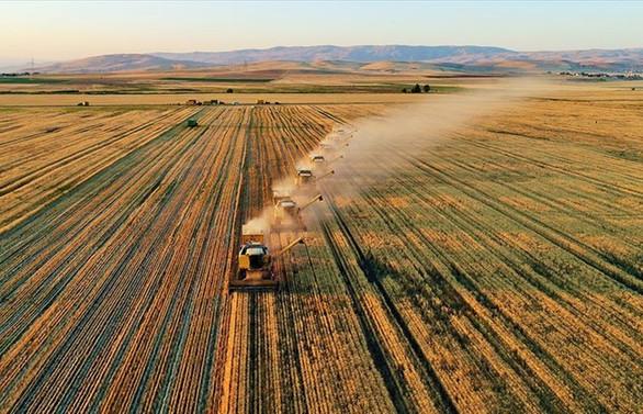 Tarımsal girdi fiyatları temmuzda arttı