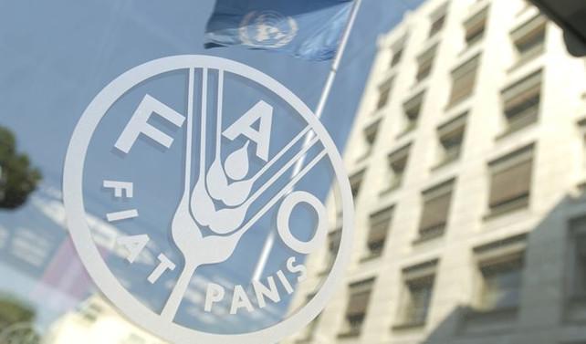 FAO, Şanlıurfa'nın bozkır ekosistemini korumaya alacak