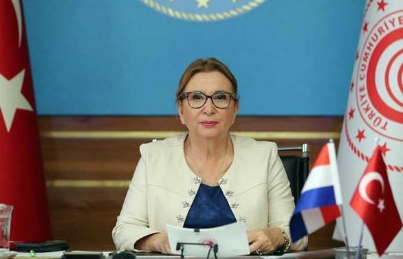 Pekcan: Türk firmalar Hollanda'da daha fazla proje üstlenmeli