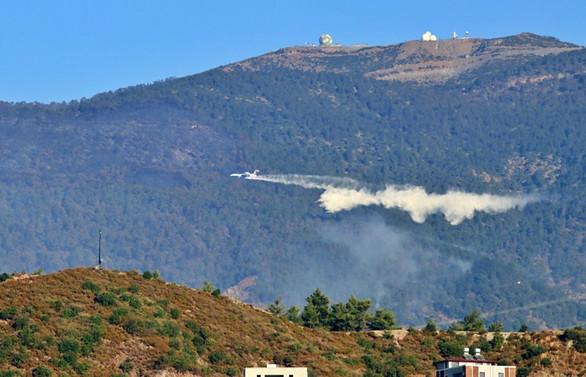Pakdemirli: Hatay'daki orman yangını kontrol altına alındı
