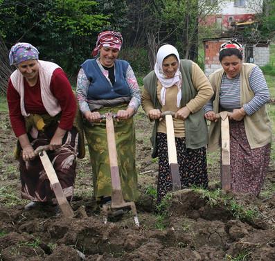 Cumhurbaşkanı Erdoğan'ın tarım çağrısına Trabzon'dan destek
