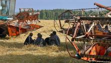 Rusya'nın tahıl ihracatı azaldı