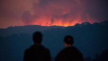ABD'de orman yangını çıkartana rekor ceza