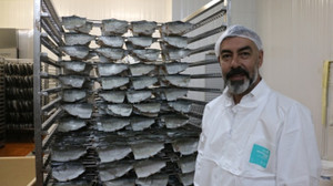 Denizi olmayan Denizli'den Rusya'ya balık ihracatı