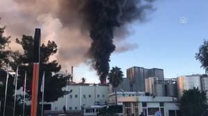 Adana'da yangın