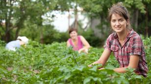 Ziraat'ten genç çiftçiye kredi desteği
