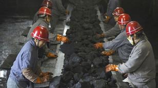 Gıda güvenliğimiz kömür kurbanı olmasın