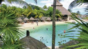 Mayalar, tacolar ve iguanalar